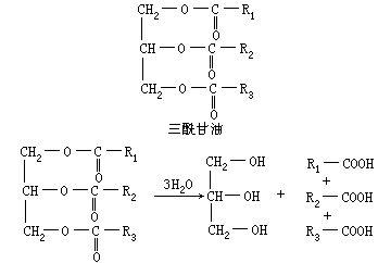 一分子甘油彻底氧化分解产生多少atp图片