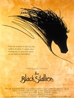黑神駒The Black Stallion (1979)