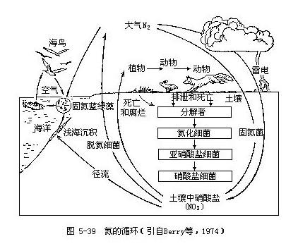 氣體型循環